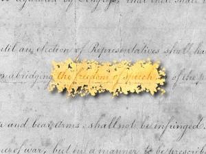 Freedom of Speech Legal Blog Dissertation
